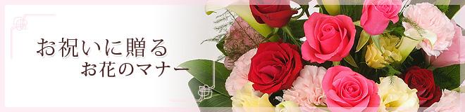 お祝いに贈る お花のマナー